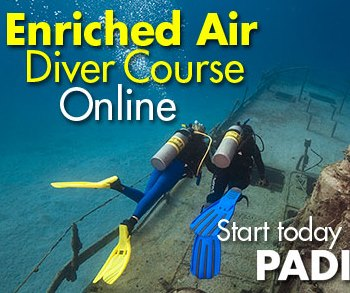padi enriched air nitrox diver