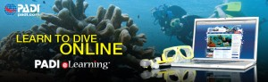 open water course elearning