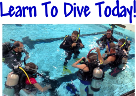 Dive Courses Nanaimo - Sink or Swim Scuba